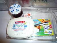 冷蔵庫整理収納G.jpg